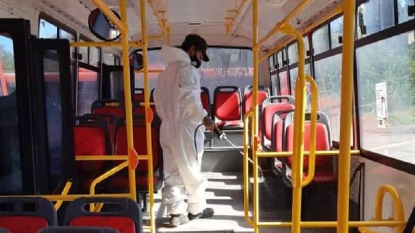 Trabajos de desinfección en paradas de colectivo y transporte público